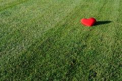 Corazón perdido foto de archivo