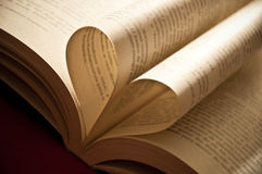 Corazón que muestra amor Foto de archivo