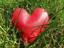 Corazón que oculta en la hierba Fotografía de archivo
