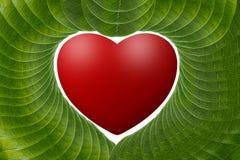 Corazón rojo con las hojas verdes. Imágenes de archivo libres de regalías