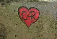 Corazón rojo con las iniciales, talladas en una corteza de árbol Foto de archivo libre de regalías