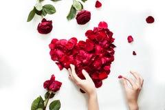 Corazón rojo de los pétalos de la visión superior Imágenes de archivo libres de regalías