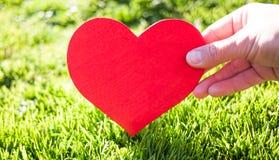Corazón rojo a disposición en fondo de la hierba verde Fotografía de archivo