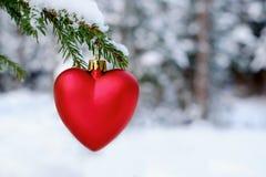 Corazón rojo en el árbol de navidad Fotografía de archivo libre de regalías