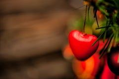 Corazón rojo en el árbol de navidad Imagen de archivo libre de regalías