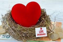 Corazón rojo en jerarquía con la nota de papel con el seguro de vida de las palabras en el fondo euro del dinero - concepto del s imagen de archivo libre de regalías