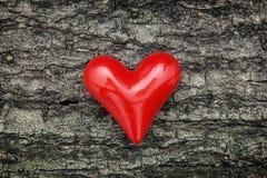 Corazón rojo en la corteza de árbol Fotografía de archivo libre de regalías