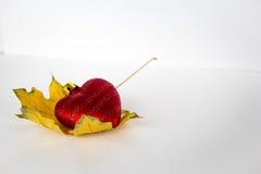 Corazón rojo en la hoja de arce Foto de archivo