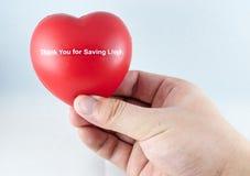 Corazón rojo en la mano Fotos de archivo libres de regalías