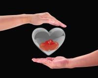 Corazón rojo en la mano de un hombre. Fotos de archivo