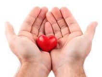 Corazón rojo en las manos masculinas Fotos de archivo libres de regalías
