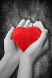 corazón rojo en manos Foto de archivo libre de regalías