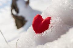 Corazón rojo en rama nevosa Fotografía de archivo