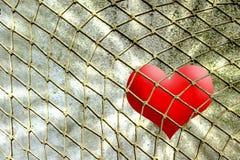 Corazón rojo en red de la cuerda contra la pared Imagenes de archivo