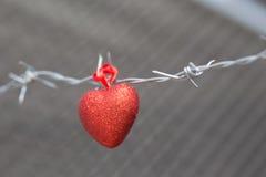 Corazón rojo en un fondo del alambre de púas Imágenes de archivo libres de regalías