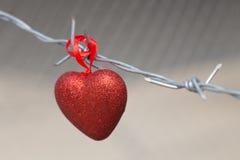 Corazón rojo en un fondo del alambre de púas Imagen de archivo