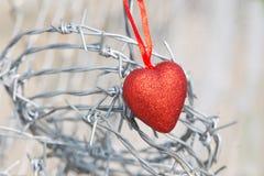 Corazón rojo en un fondo del alambre de púas Imagen de archivo libre de regalías