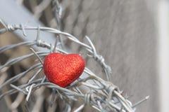 Corazón rojo en un fondo del alambre de púas Fotos de archivo