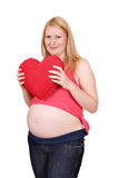 Corazón rojo grande del asimiento de la mujer embarazada Fotos de archivo libres de regalías