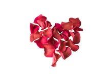 Corazón rojo hermoso de los pétalos color de rosa Aislado en el fondo blanco Imagen de archivo libre de regalías