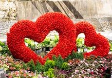 Corazón romántico de la forma con el fondo de las rosas Imágenes de archivo libres de regalías