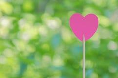 Corazón rosado Foto de archivo libre de regalías