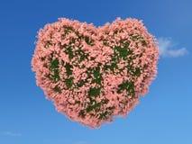 Corazón rosado de la flor en el cielo Fotografía de archivo