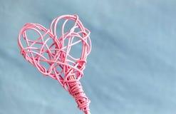 Corazón rosado del pedig en fondo azul Imagen de archivo