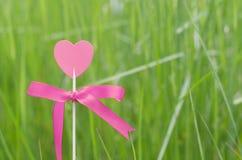 Corazón rosado en la hierba Fotos de archivo libres de regalías
