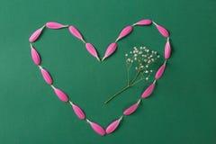 Corazón rosado hecho de pestals del gerbera en fondo verde con la flor blanca imagen de archivo