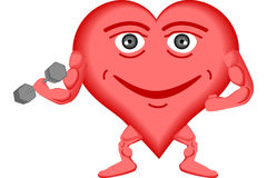 Corazón sano Fotografía de archivo