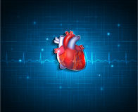 Corazón sano en un fondo azul de la tecnología Fotos de archivo