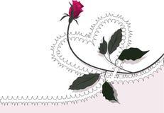 Corazón-se levantó Foto de archivo libre de regalías