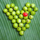 Corazón verde fotos de archivo