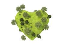 Corazón verde demasiado grande para su edad con la hierba y los árboles. Imagen de archivo libre de regalías