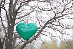 Corazón verde en un árbol Foto de archivo libre de regalías