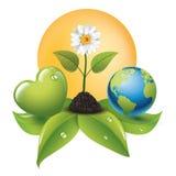 Corazón verde para una buena energía - concepto ecológico - logotipo Fotos de archivo libres de regalías