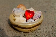 Corazón y cáscaras Foto de archivo libre de regalías