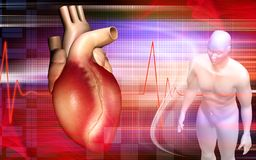 Corazón y cuerpo humano Imágenes de archivo libres de regalías