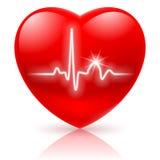 Corazón con el cardiograma. Fotografía de archivo libre de regalías