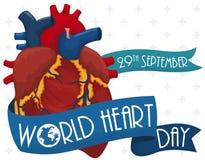 Corazón con las cintas para conmemorar el día del corazón del mundo, ejemplo del vector Fotos de archivo
