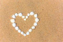 Corazón de la cáscara del mar en la playa de la arena Foto de archivo libre de regalías