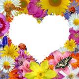 Corazón de la flor Fotos de archivo libres de regalías