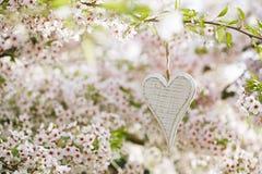Corazón de madera en primavera con el flor Imagenes de archivo