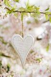 Corazón de madera en primavera con el flor Fotos de archivo