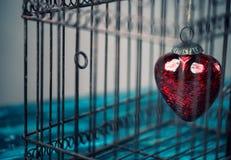 Corazón en jaula Imágenes de archivo libres de regalías