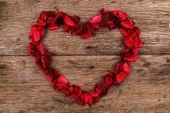 Corazón hecho de los pétalos rojos de la flor del popurrí - serie 2 Imagen de archivo