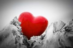 Corazón rojo en un tronco y ramas de árbol Amor Fotografía de archivo