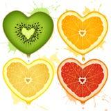 Corazones de la fruta cítrica del vector Fotografía de archivo libre de regalías