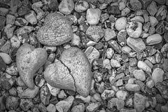Corazones de la piedra Imagenes de archivo